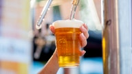 Beer goes green as breweries look to solar power