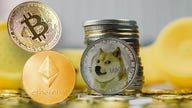 Bitcoin investor: Liquidating Dogecoin provided me with financial freedom