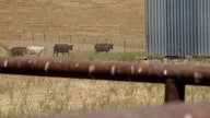 Consumers could see prices rise as Western droughts worsen