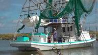 Hurricane Ida leaves Louisiana's $2.4 billon seafood industry in shambles