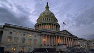 We can't have 'stimulated economy' if US economy isn't open: Rep. Hice
