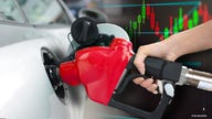 Gas prices contingent on OPEC 'finally' heeding 'Biden's plea to increase oil production': Analyst