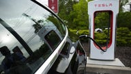 Electric vehicles 'taking over' auto, lithium markets: Piedmont Lithium CEO