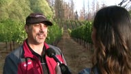 California Wineries struggle to find insurance amid drought