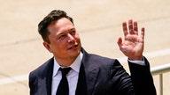 Jordan Belfort calls out Elon Musk after his Bitcoin comments