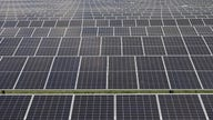 Tariffs on solar panel imports hurting American jobs is a 'false narrative': Auxin Solar CEO
