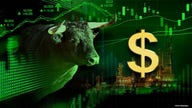 Expert predicts natural gas 'bull run' has a long way to go
