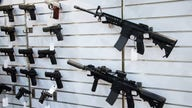 Is gun control the answer to rising crime?