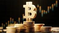 Bitcoin is emerging as 'digital gold': Expert