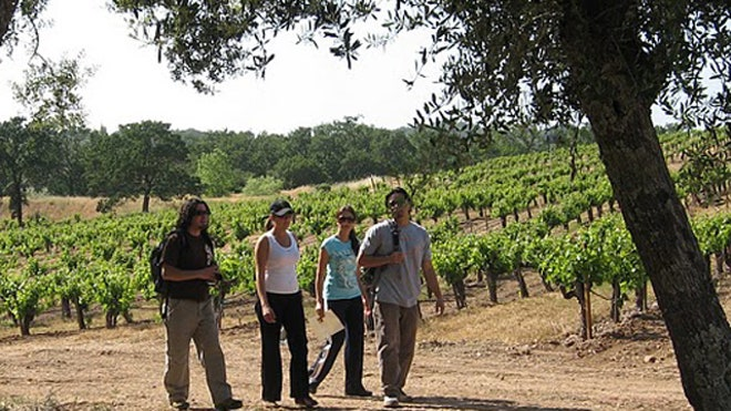 wine-country-trekking