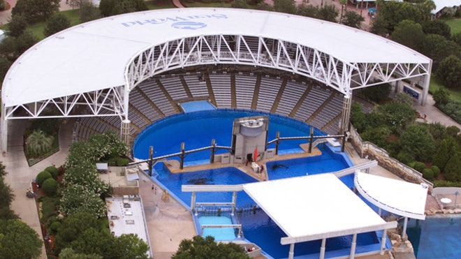 Shamu Stadium at Sea World