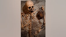 "Just in time for Halloween, the man known as ""Bulgaria's Indiana Jones"" may have unearthed the grave of one of the undead. On Oct. , archaeologist Nikolai Ovcharov announced that he discovered what he called a ""vampire grave"" that contains a skeleton with a ploughshare – an iron rod used for a plough – driven through its chest, the Telegraph reports. The grave dates back to the th century and was discovered at Perperikon, an ancient Thracian city in southern Bulgaria."