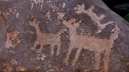 "Petroglyphs are valuable relics of a past age – rock carvings that are produced by chiseling directly into a rock's surface. That being said, archaeologists and conservationists alike are dismayed when these carvings are defaced by graffiti. What is the best way to clean up the mess? The answer surprisingly is a product named ""elephant snot."""