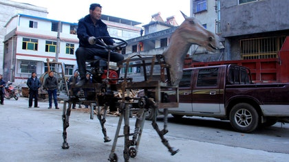 While many retirees take up interesting hobbies when they leave the workforce, Su Daocheng, , might be able to claim the title of most unusual post-work activity – designing a rideable robotic horse.