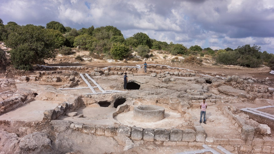 Archaeologists discover 'industrial scale' wine production at ancient site