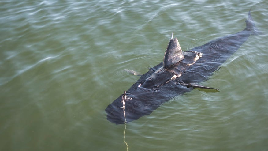 GhostSwimmer: Navy's new stealth robot