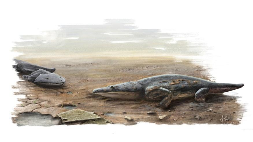 MetoposaurusArtCreditJoanaBruno.jpg