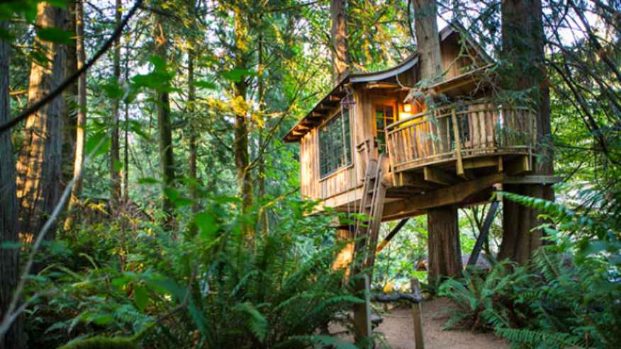Charming treehouses for rent around the world fox news for Charming hotels of the world