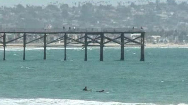 San Diego surfer found dead covered with shark bites