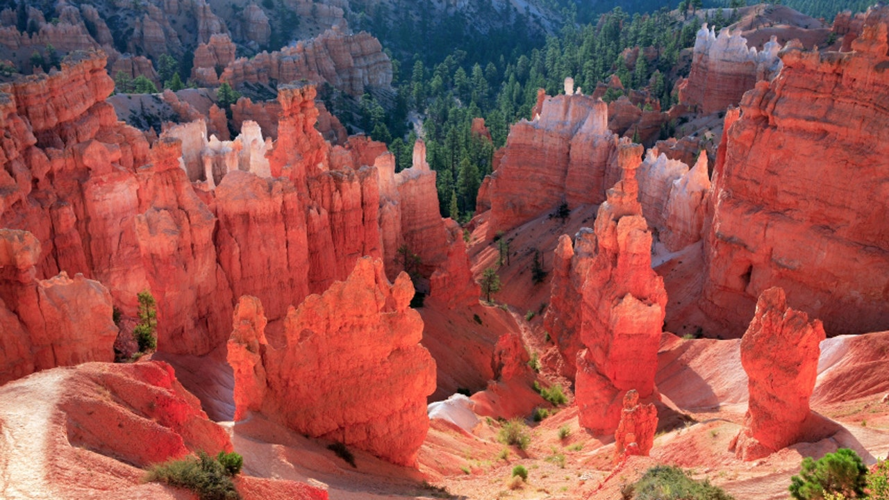 bryce canyon muslim girl personals Reasons to visit bryce canyon, utah for an outdoor vacation  five facts about bryce canyon, utah add comment  gary is the gay guy that every girl wants to be.