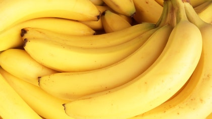 A deadly disease is slowly diminishing the world's most popular banana crop.