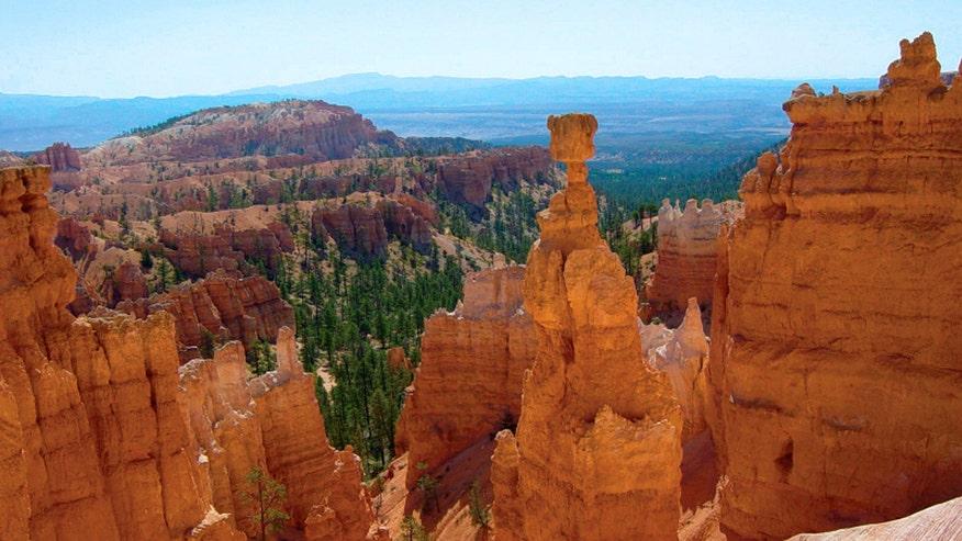 Travel hilarious tripadvisor reviews national parks