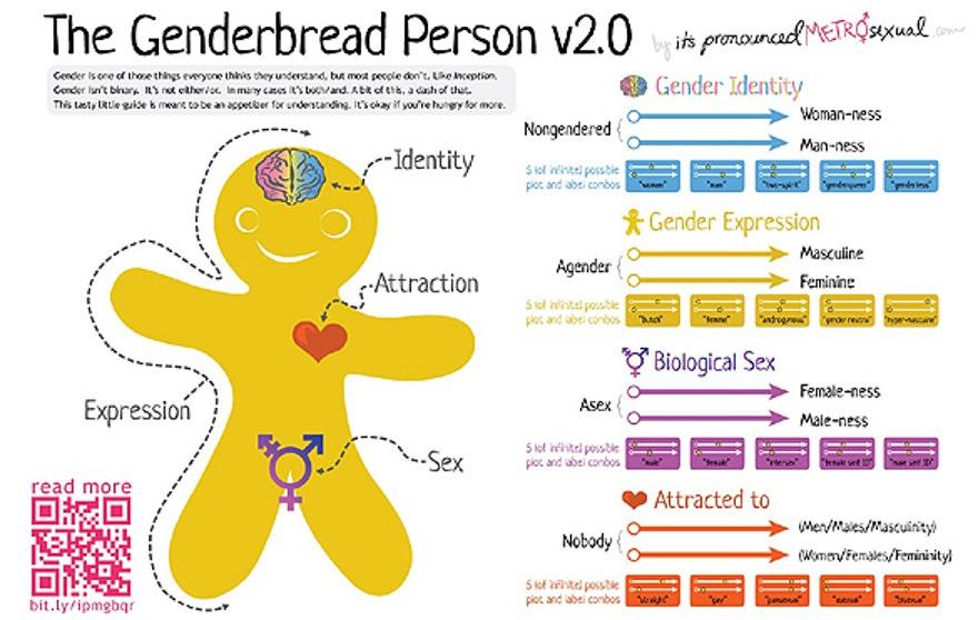 genderbread chart 2.jpg