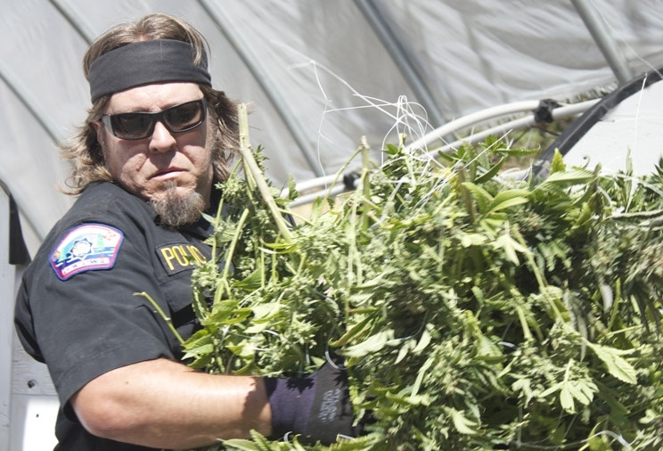 Exclusive: New Discovery Channel series 'Pot Cops' chronicles marijuana crackdown