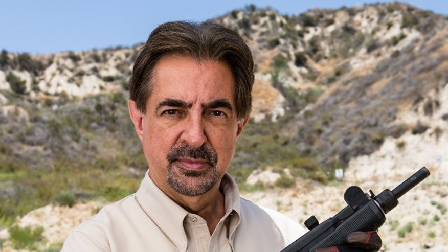 joe mantegna defends the second amendment