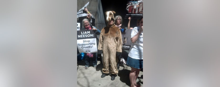 Animal welfare activists picketing Liam Neeson's home on Saturday said they don't agree with him that the city's carriage horses should keep working.