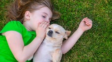 Kids who spend time cuddling up with Fido or Fluffy are more likely to turn their noses up at meat later in life, a new study suggests