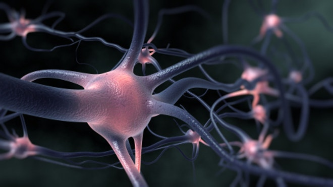 A potential cure for Alzheimer's? Scientists discover new culprit behind brain-wasting disease