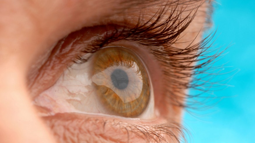 Researchers regrow corneas using adult human stem cells