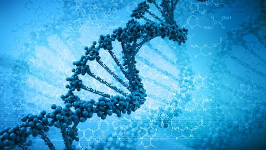 DNA genes formatted.jpg