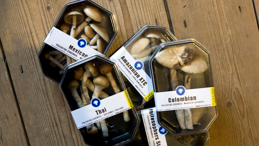 Scientists find how magic mushrooms alter the mind