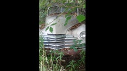 Classic car found in the weeds.a