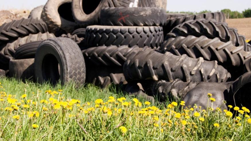 dandy-tires-660.jpg