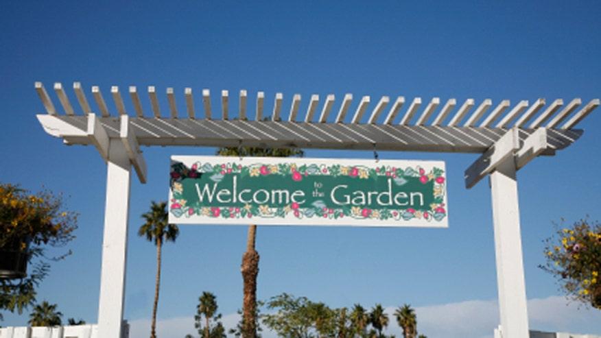 garden660.jpg