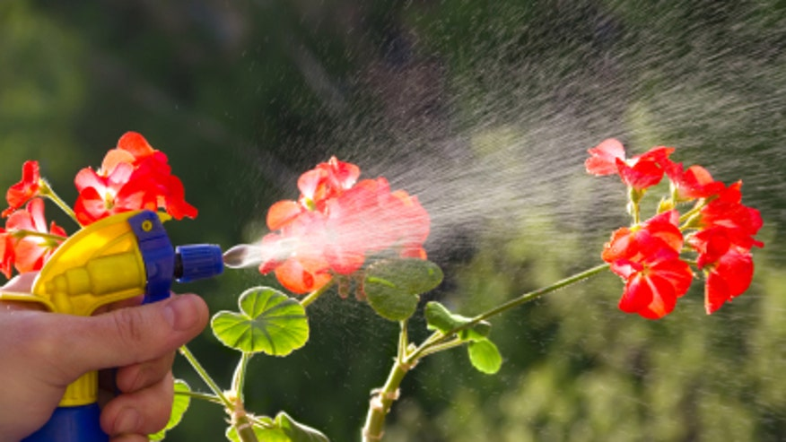 What are the pros and cons of garden pesticides fox news for Garden pesticides