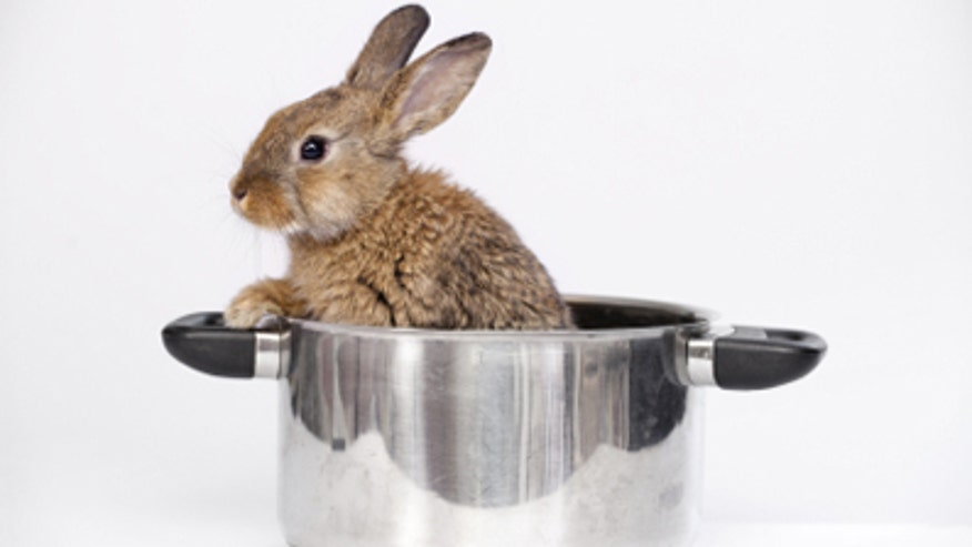 rabbitpot.jpg