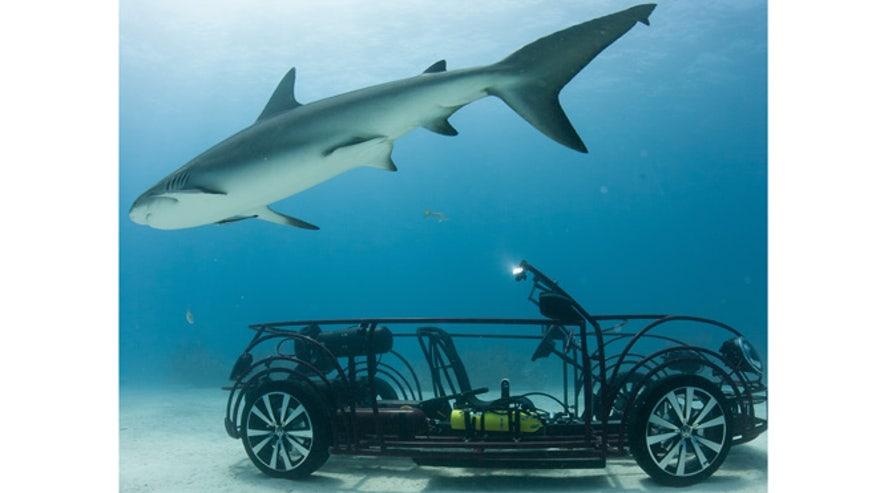 vw-shark-tank-660.jpg