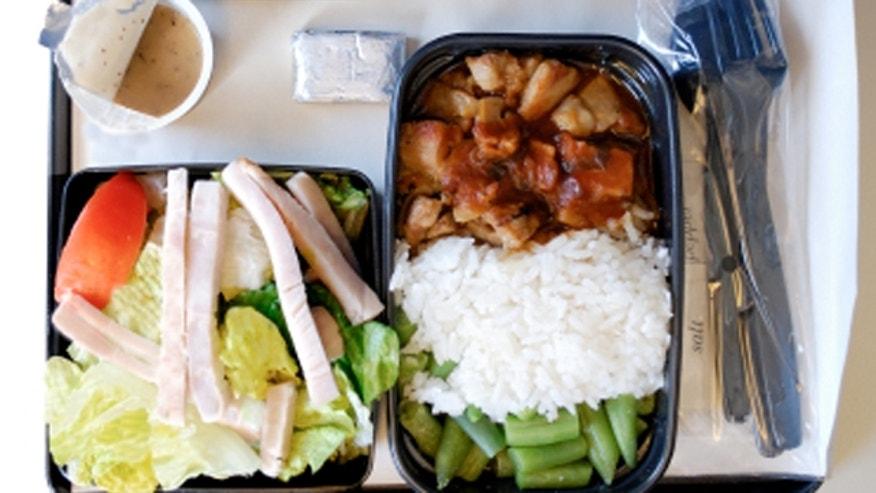 airlinefood.JPG