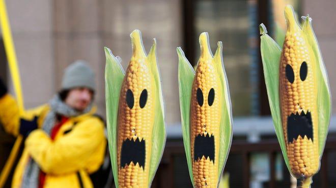 crops_ge.jpg