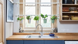 As temperatures drop and leaves fall from the trees, adding greenery inside can help ease the winter blues. Here are eight places where container plants can bring style and good cheer to your home.
