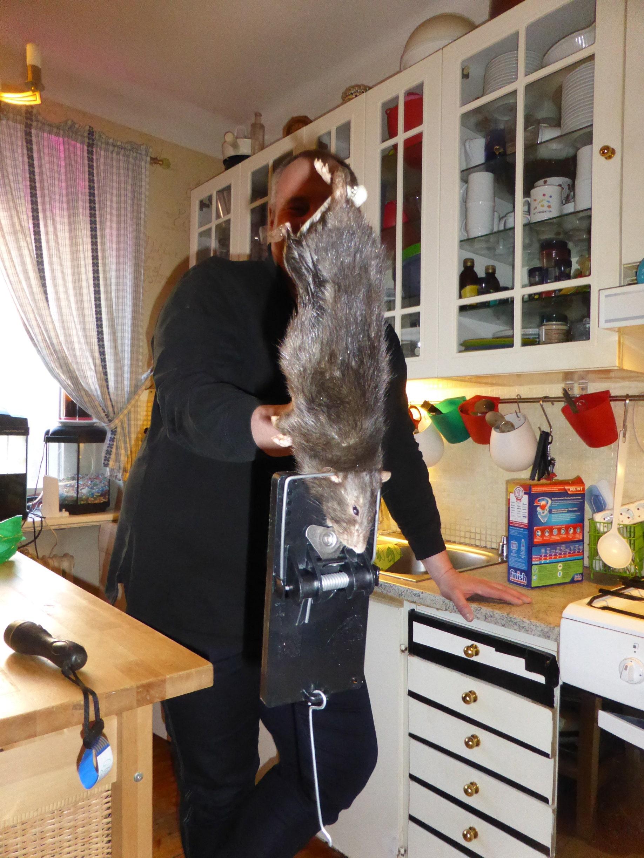 Шведские семьи онлайн 22 фотография