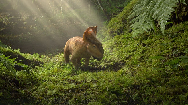 Walking with dinosaurs: Feathered, furry and fierce