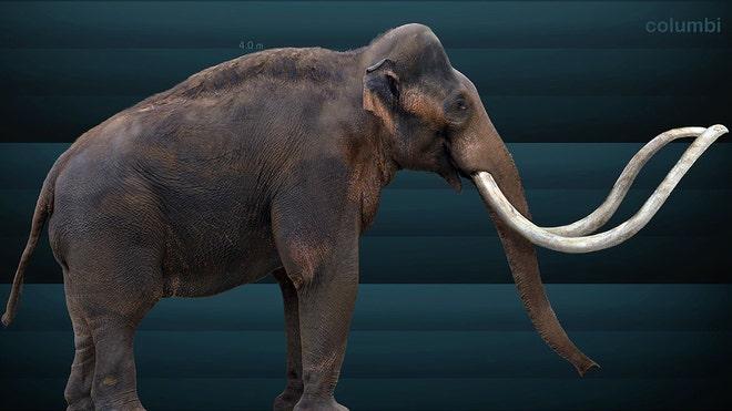 Museum exhibit stars Indiana's prehistoric beasts
