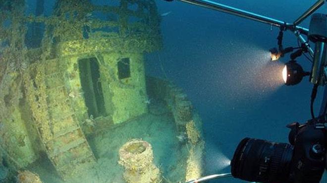 lionfishsealights.jpg