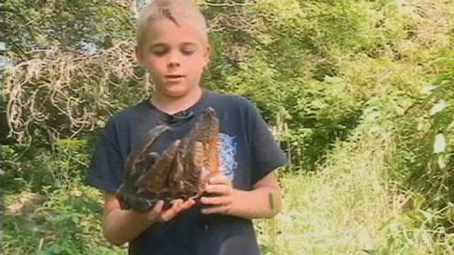 Kids find mastodon tooth in Iowa creek