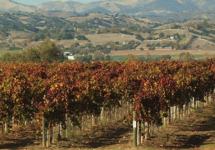 Fear of stealth casino plan stalks California wine country